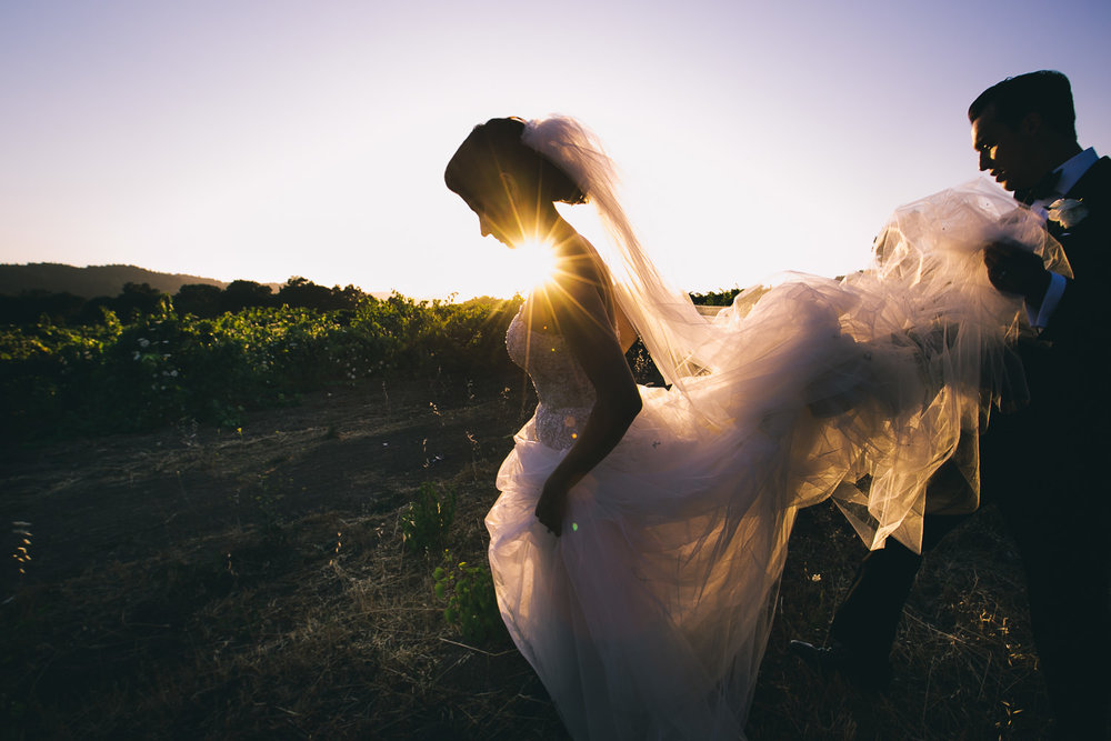 Napa Vineyard wedding photos from Persian wedding