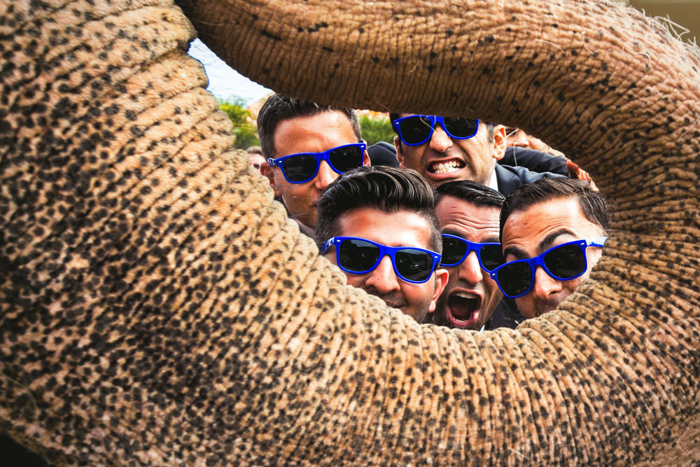 Trump National Golf Club Wedding - Groomsmen peeking through elephant