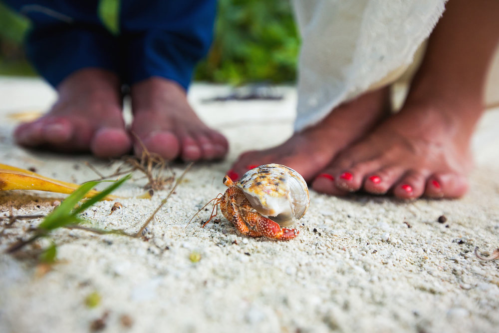 Four Seasons Bora Bora Wedding - Feet in the sand with the hermit crab