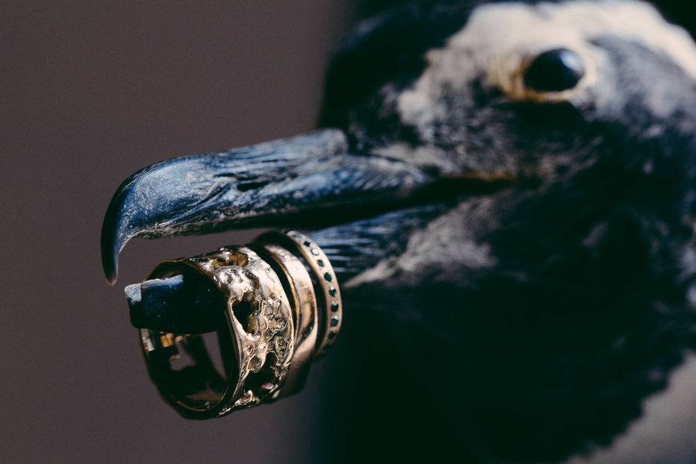 Rose McGowan Wedding at Paramour Estate - Interesting shot of bird with gold rings