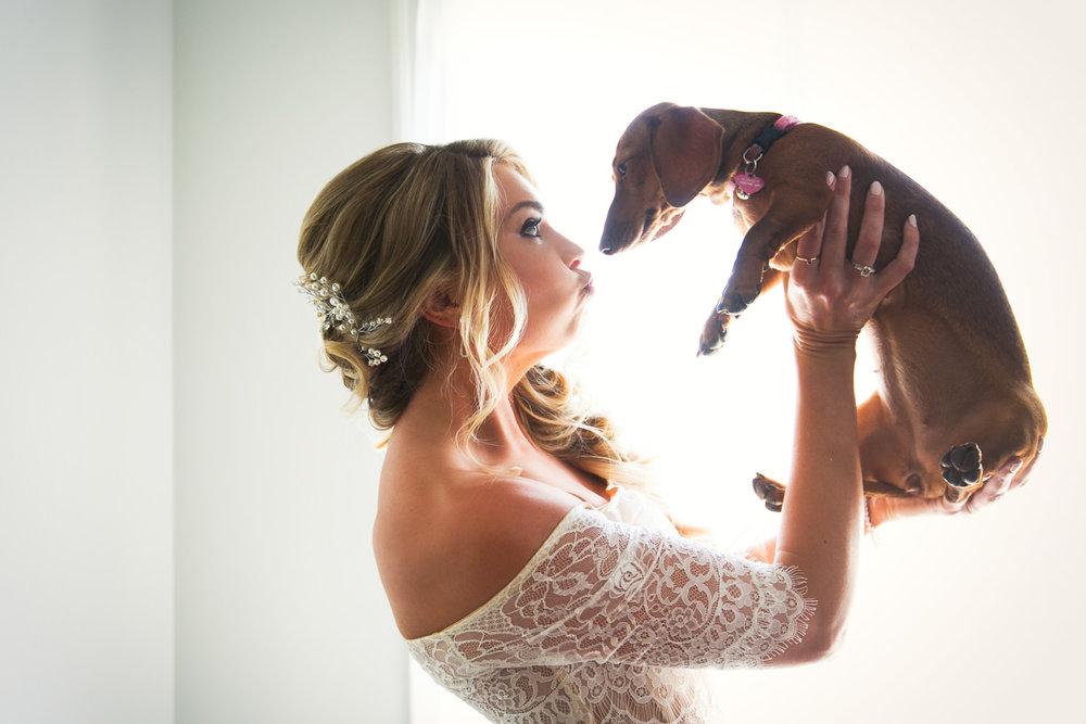 Ebell Long Beach Wedding - Brides cute dog