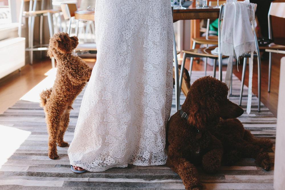 033-Daylesford_Wedding_Lewis_Diana.jpg