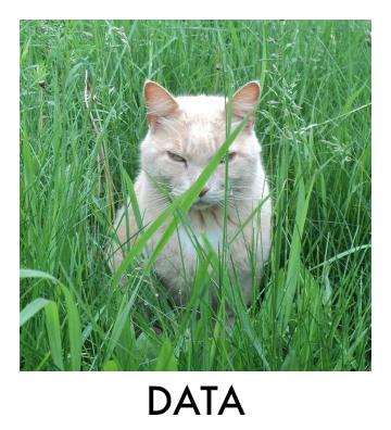 data-rb.jpg