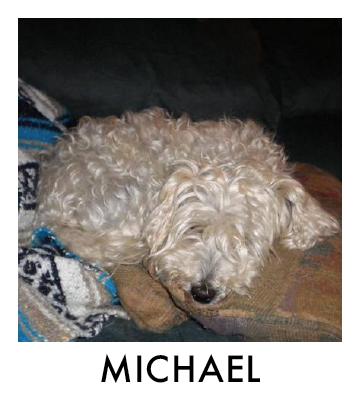 OP - Michael.jpg