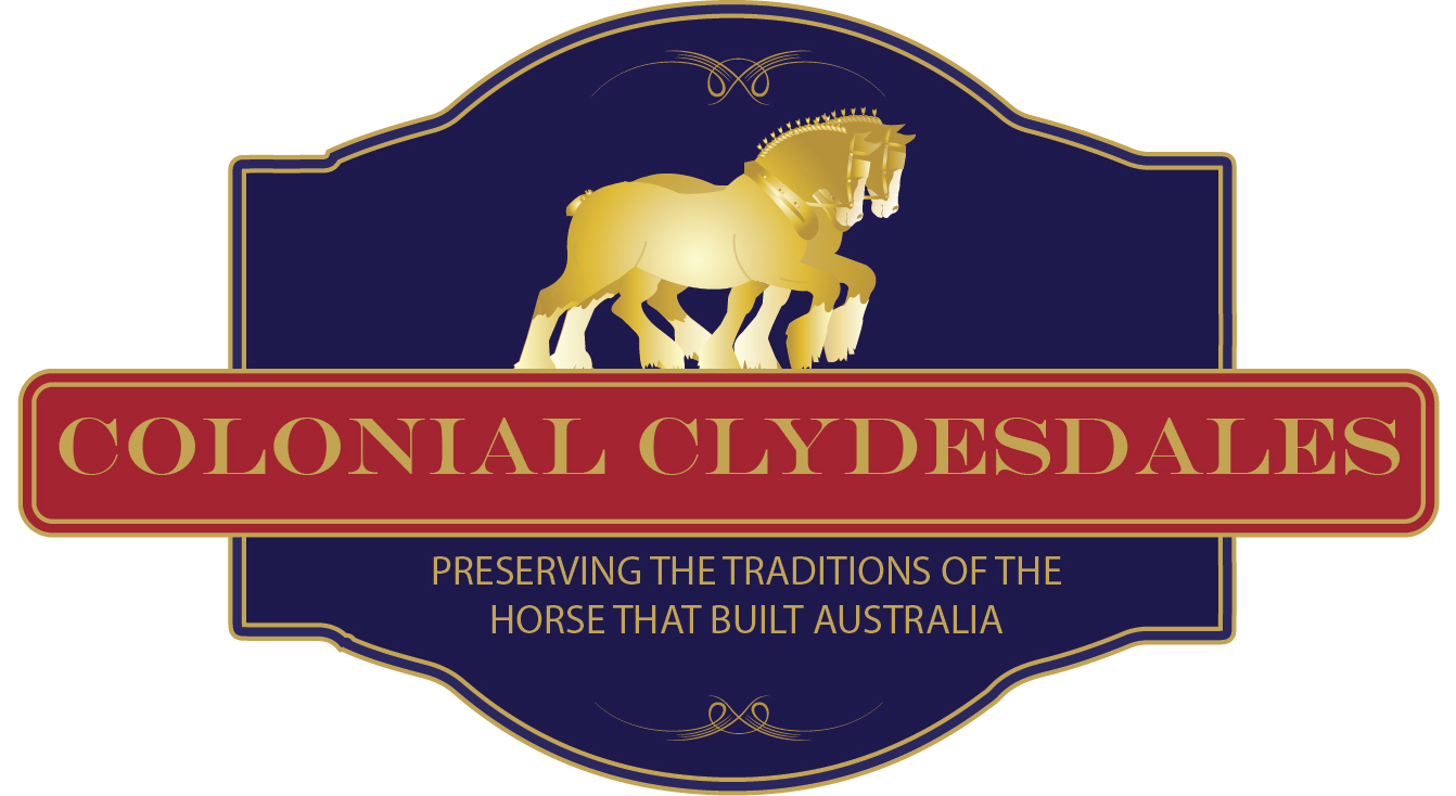 Colonial Clydesdales & Carriages