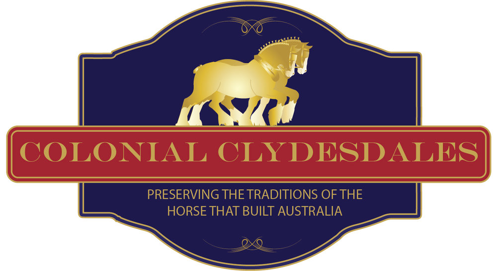 Colonial Clydesdale logo.jpg
