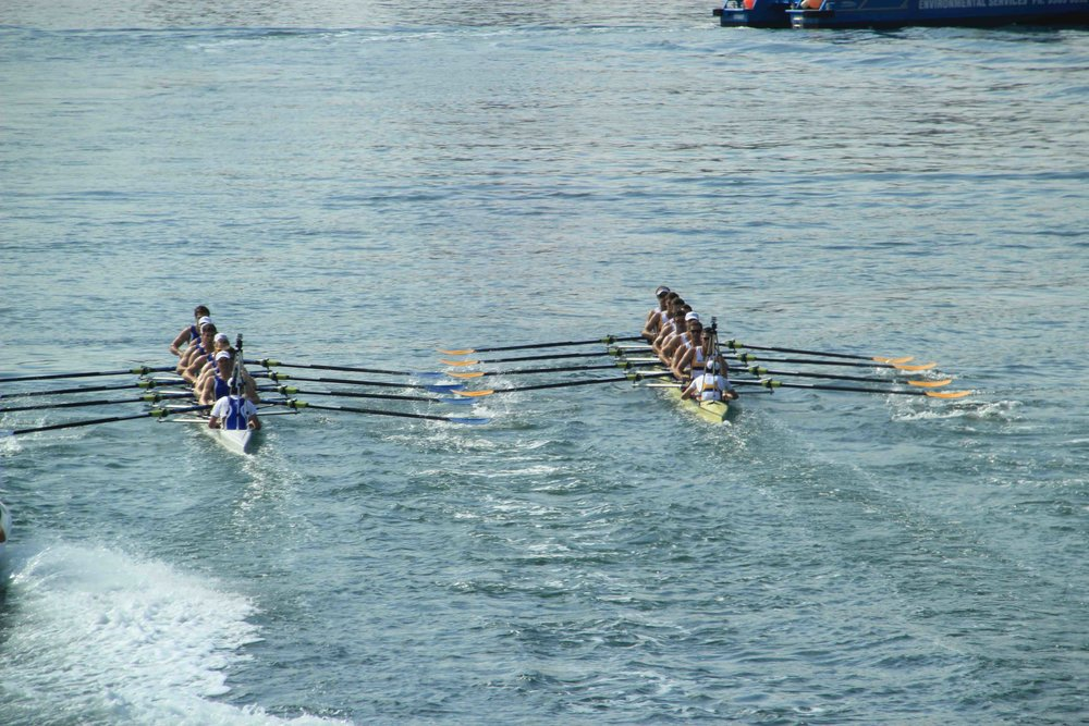 mens eights - Melbourne and Sydney unis clash near start just past Greenwich Point.jpg