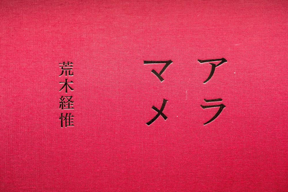 araki_w-5.jpg