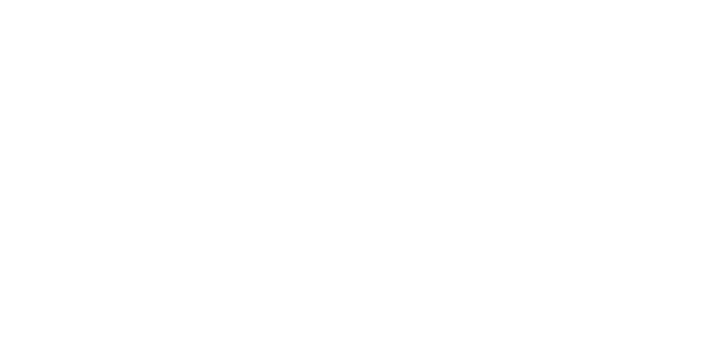 Dingle Falconry-logo-white (1).png
