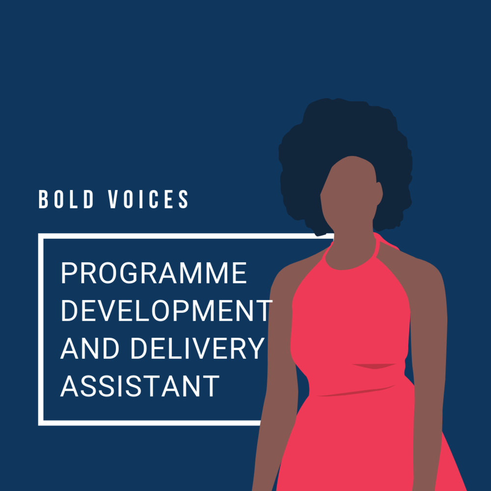 Programme Development and Delivery Assistant