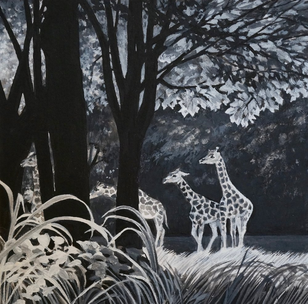 """Bronx Zoo      6""""x6""""     2018     tempera and gesso on paper"""