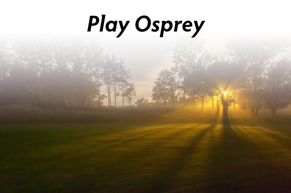PlayOsprey.jpg