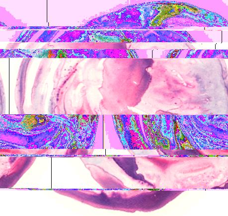 glitch2-copy.jpg