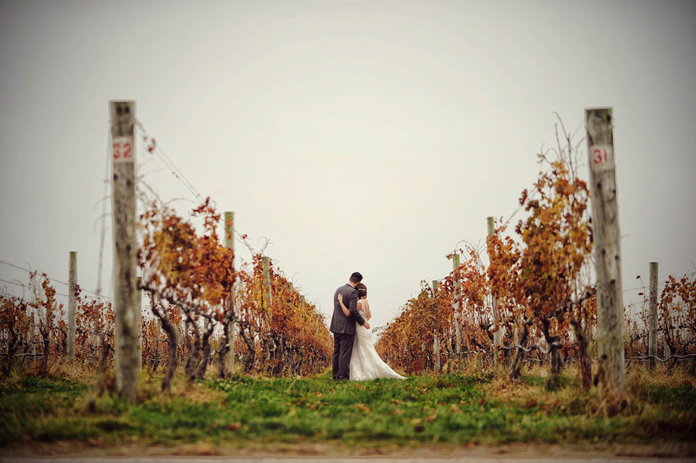 VINEYARD WEDDINGS -