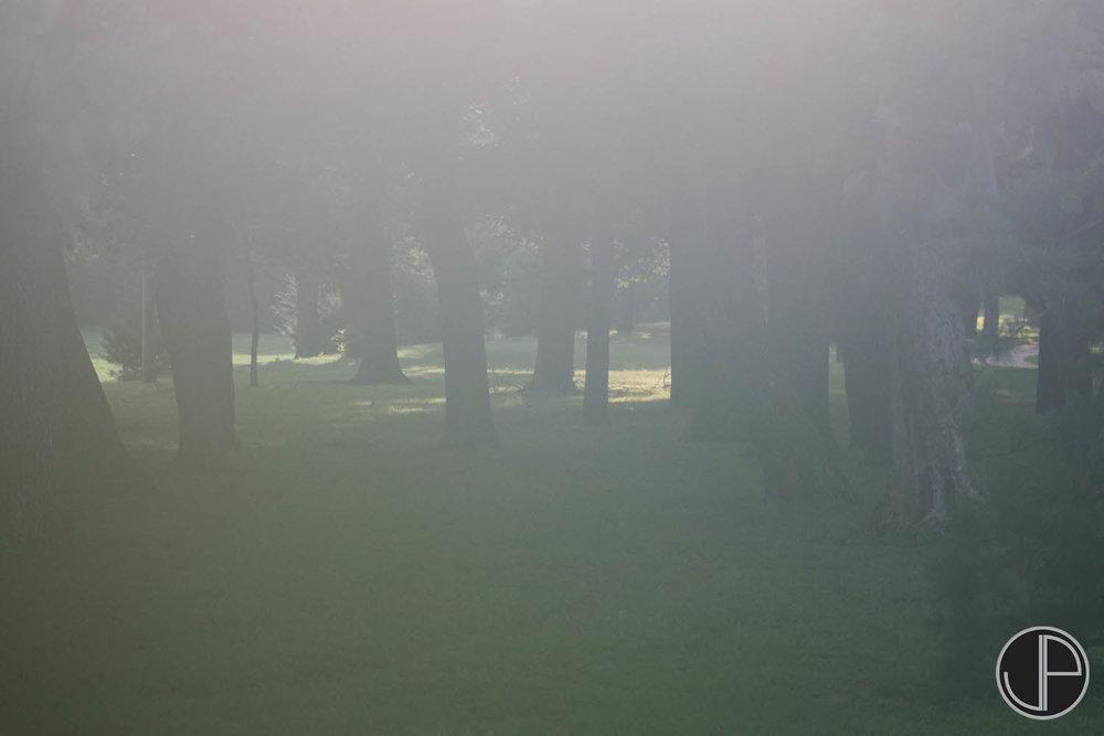 6-26-15 Fog-1.jpg