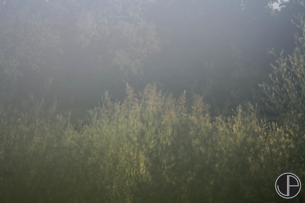 6-26-15 Fog-4.jpg