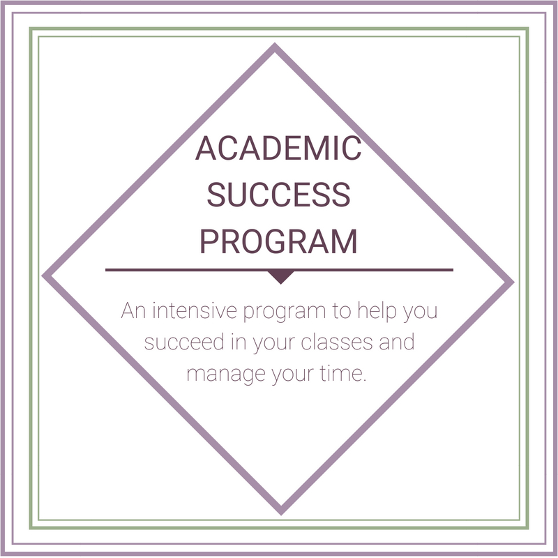 The college application program (1).jpg