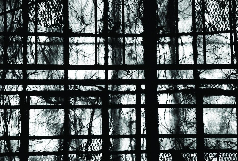 Window- Duit.jpg
