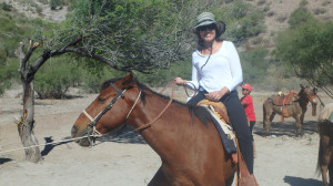 jeri Donovan, Well Traveled, wellness travel agency, adventure