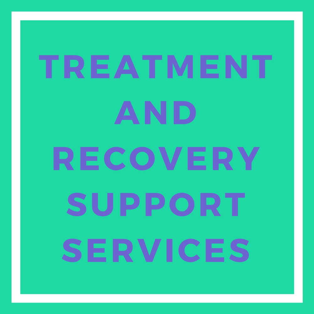 TREATMENT AND RECOVERY SUPPORT SERVICES.png