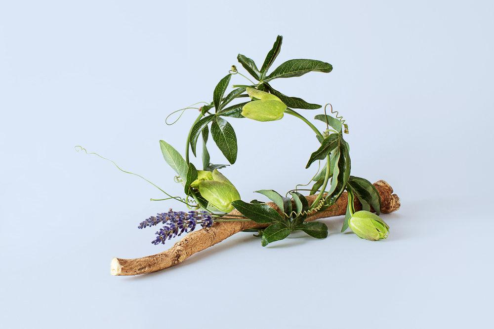 Madelene-Farin-Lucent-Botanicals-003.jpg