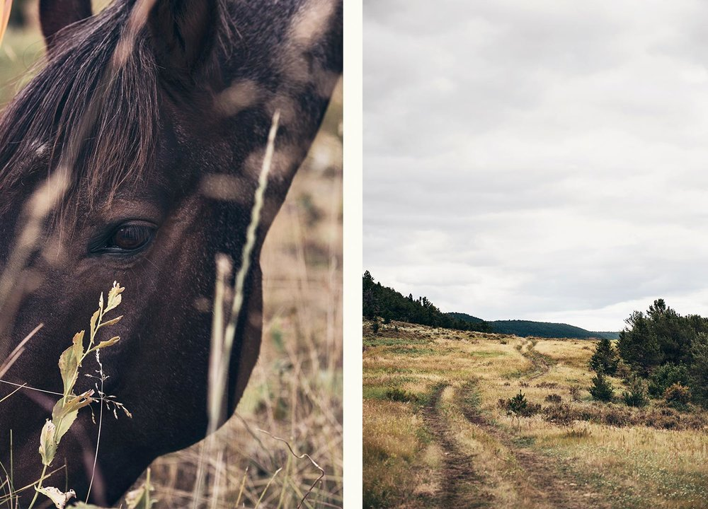 cowgirl-21.jpg