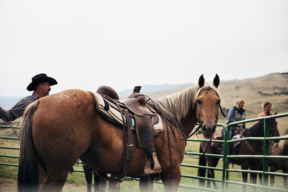 cowgirl-39.jpg