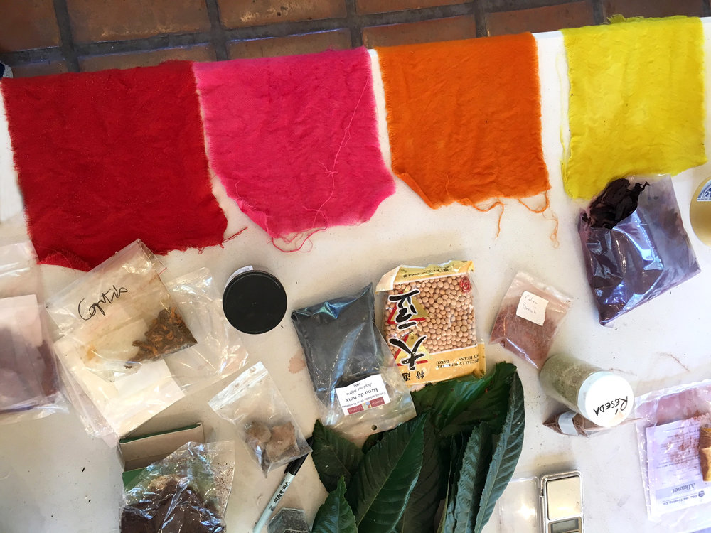 Dyestuffs and color samples in Michel Garcia's workshop at UC Berkeley Botanical Garden, August 2017.