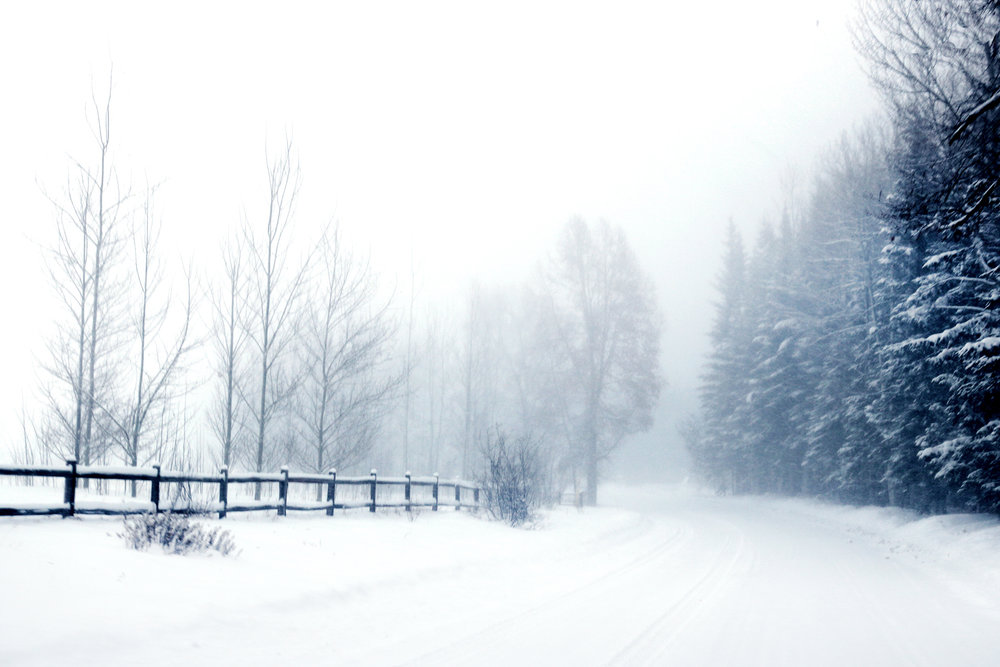 winter-road3.jpg