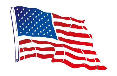 usa flag narrow PNG.png