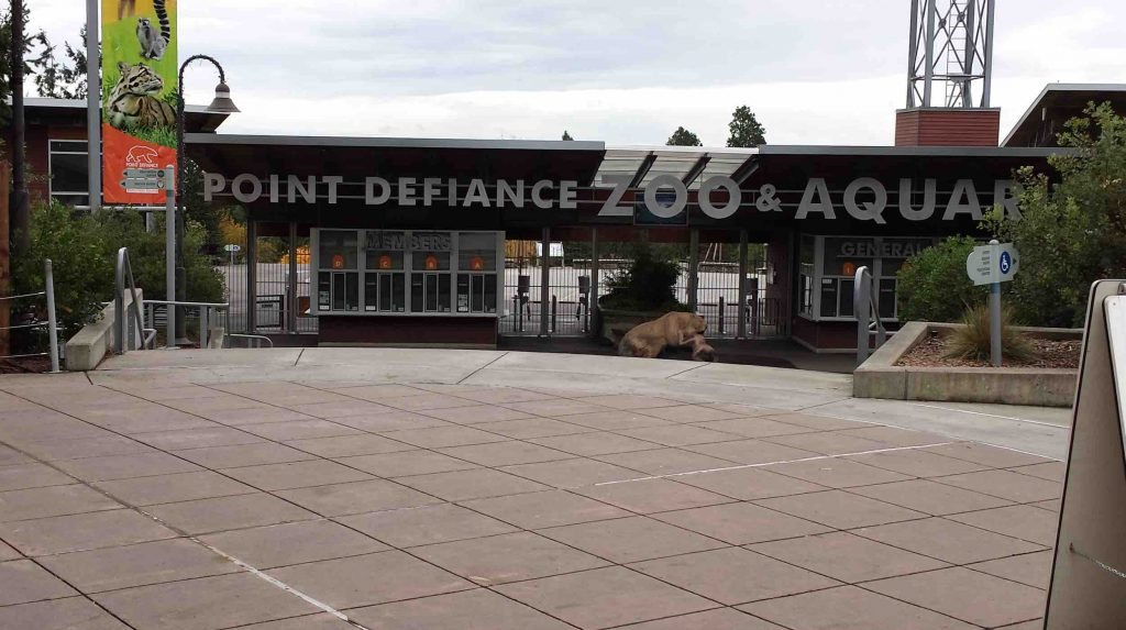 ABC Sun Control Helps Point Defiance Zoo in Tacoma, WA with a Graffiti Problem