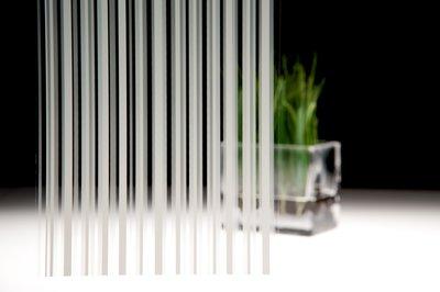 Fasara-Stripe-Line-Patterns-Seattle-WA.png