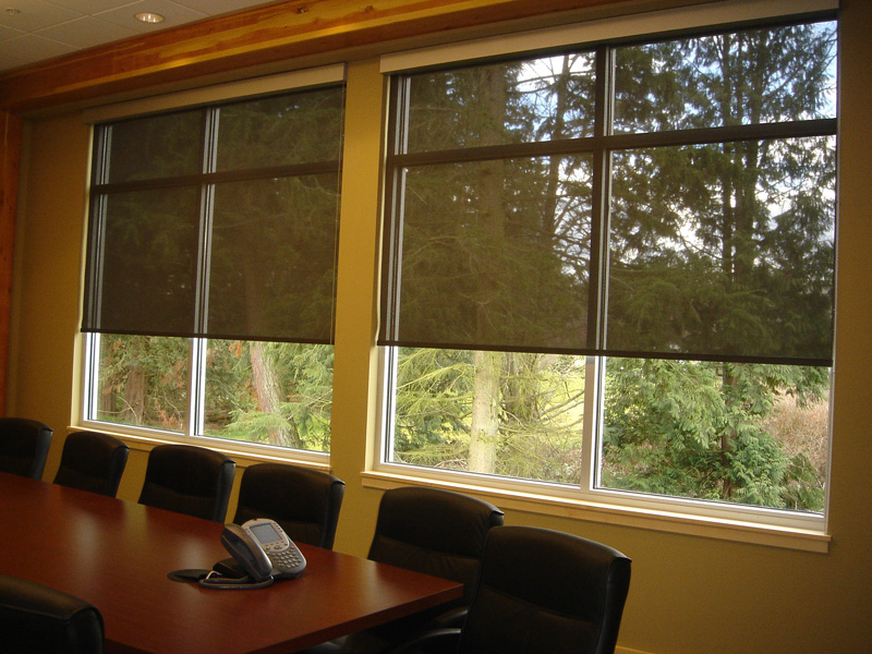roller-shades-Reject-Ultraviolet-Rays.jpg