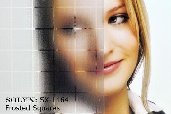 translucent-window-film-seattle-wa.jpg