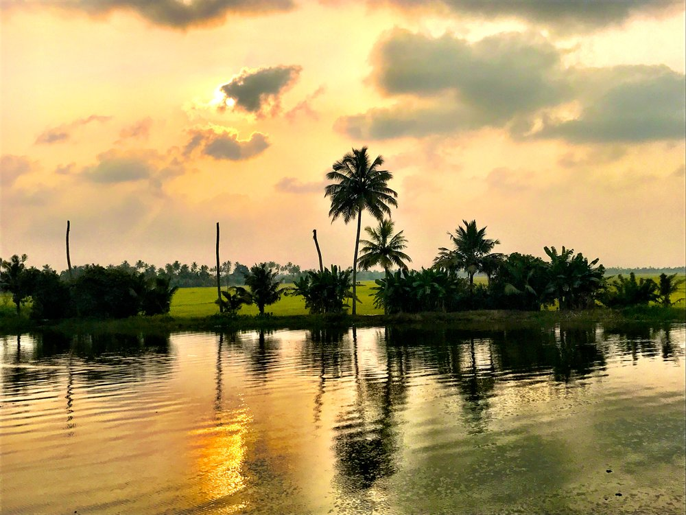 the backwaters, Alleppey, Kerala, India