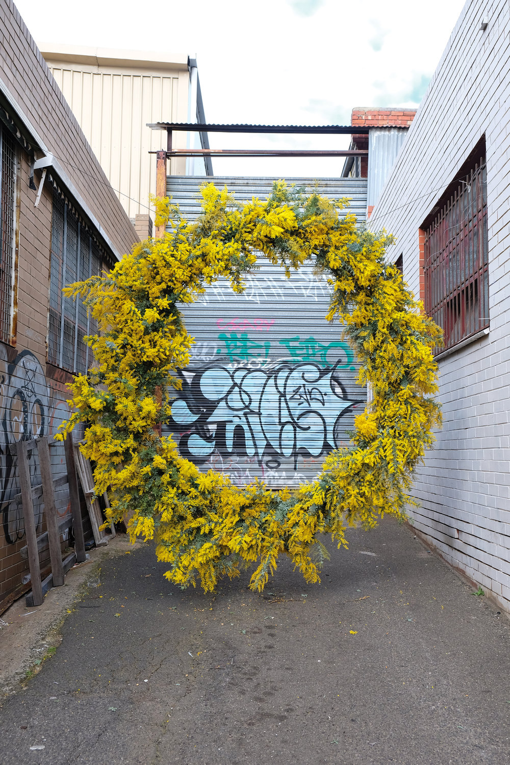 Loose Leaf_Hover Wreath_Wattle_Melbourne_2017.jpg