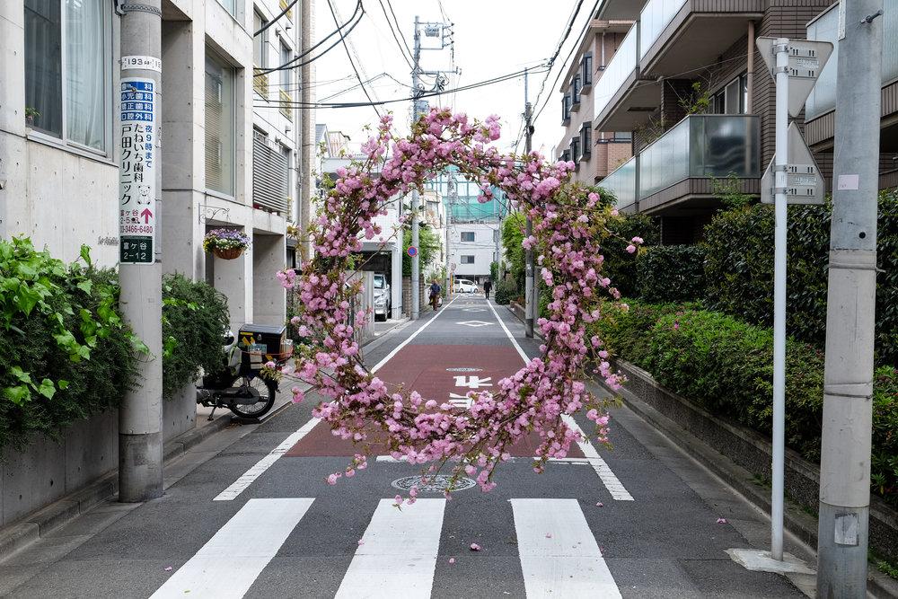 Loose Leaf_Hover Wreath_Cherry Blossom_Tokyo_2018_01.jpg