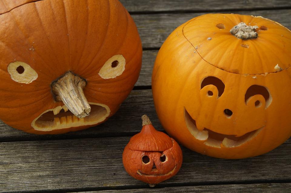pumpkins-512118_960_720.jpg
