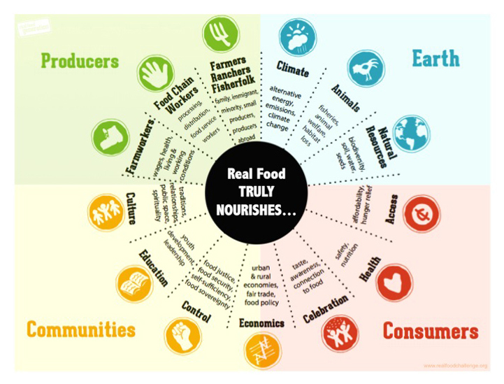 real-food-wheel.jpg