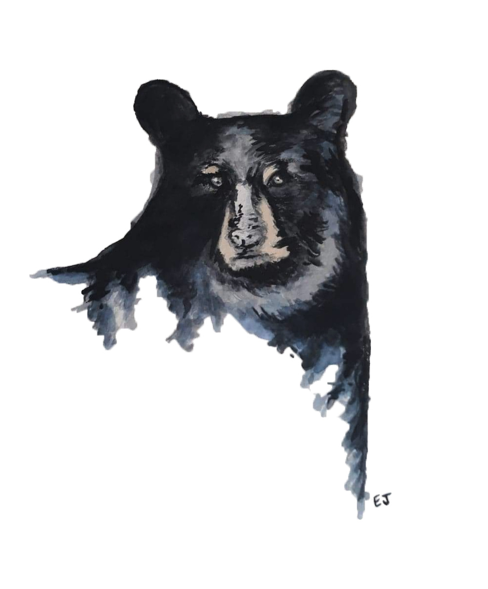 bear watercolor edited copy.png