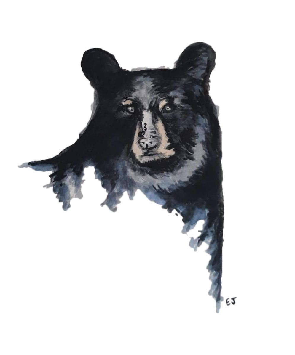 bear watercolor edited copy.png
