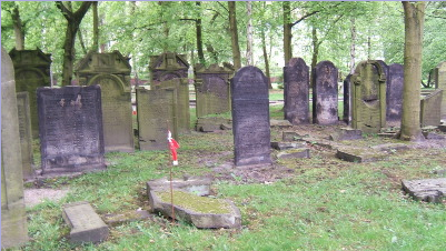 Ancient Jewish Cemetery, Hamburg. Ashkenazi tombstones are upright, Sephardi lie flat on the ground