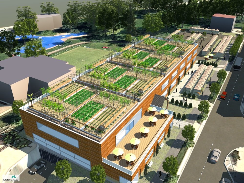 ROOFTOP GARDEN   The Kamloops Public Market Cooperative proposes green space on the rooftop. Potential projects include gardening workshops, educational space for local schools learning about ecosystems and sustainability, a relaxing location for seating and any number of other ideas.  Credit: Robert Howell, AScT, McElhanney