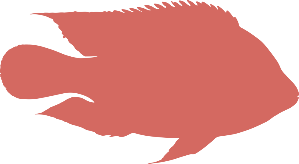 RAS red fish.png