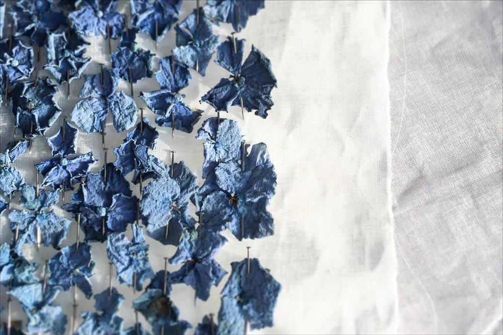 lee-simmons-botanical-artist-homepage-009.jpg