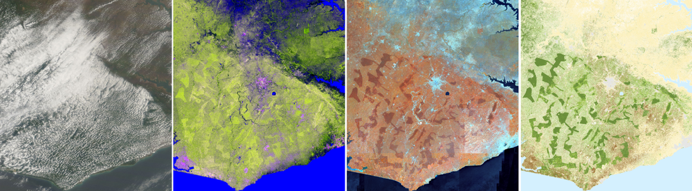 Left: usual cloudy observation of Ghana, Centre Left: cloud free Sentinel-1 input, Centre Right: cloud free Sentinel-2 input, Right: preliminary classification result. Contains modified Copernicus Sentinel data [2018]