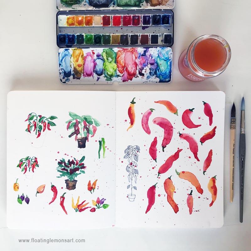 Chilli-sketches-1-floatinglemonsart.jpg