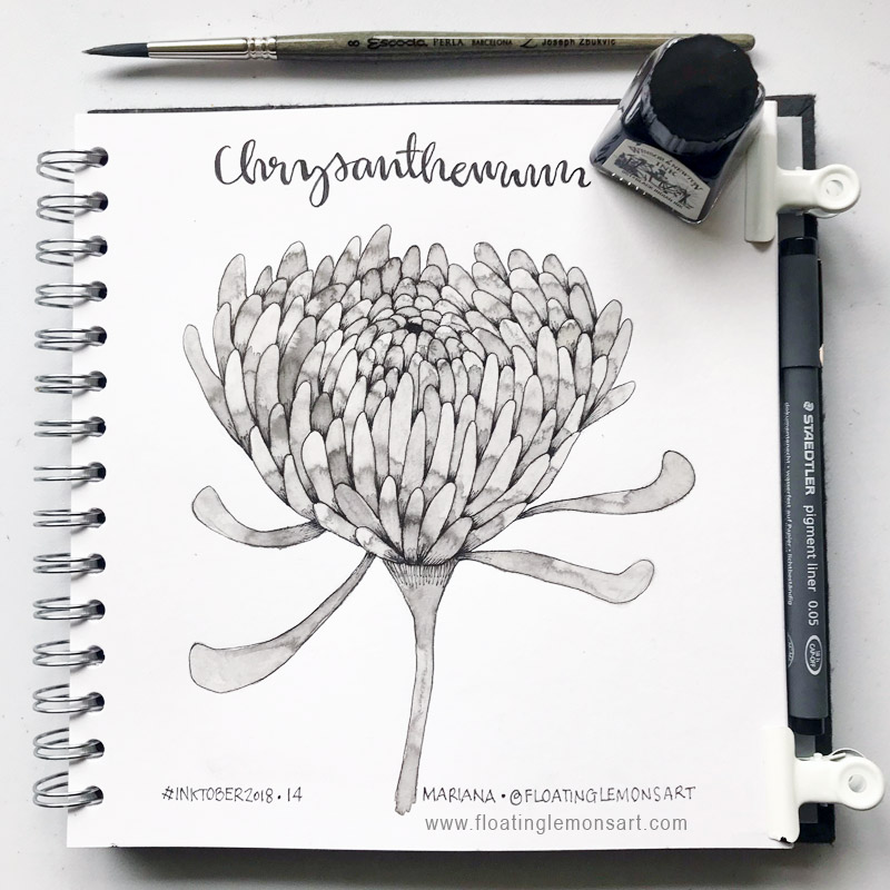 Ink Chrysanthemum by Mariana for Floating Lemons Art