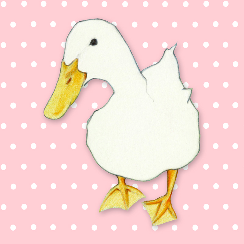 White Duck Pink by Mariana:  Floating Lemons Art