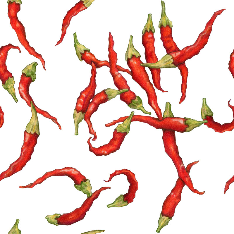 Red Hot Chillies by  Floating Lemons Art